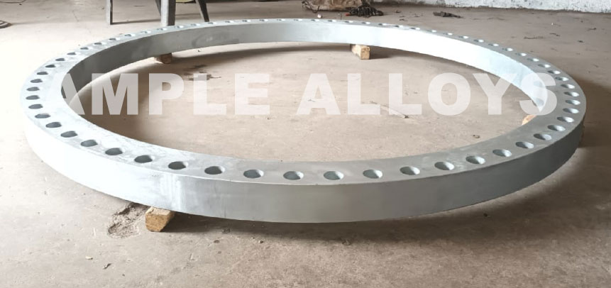 Stainless Steel Backing Ring Flange